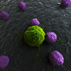 3d rendered illustration of leukocytes attacking a cancer cell