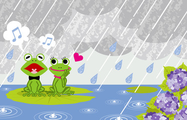 Frog couple in rainy Pond