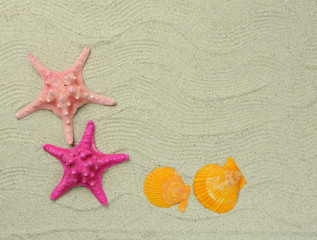 seastars sitting on beach