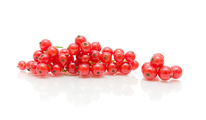 bunches of juicy red currant on white background