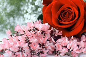 Rosa rossa e fiorellini