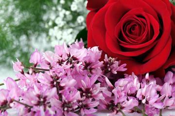 Glicine con rosa rossa
