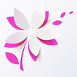 Pink paper flower vector greeting card template