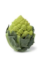 Mini Romanesco cabbage