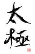 tai chi character