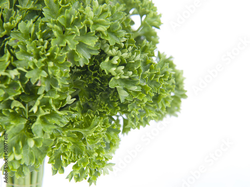 Parsley tree