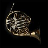 Horn instrument