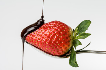Strawberry with chocolate 7
