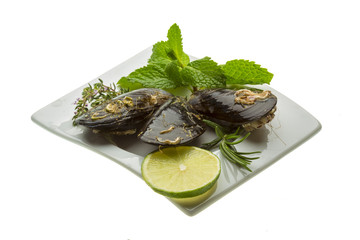 Wild mussel