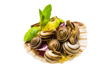 Escargot with asparagus, rosemary, thymus and tomato