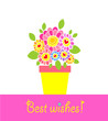 Greeting card with flowerpot and daisy