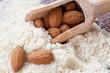 Almond flour_XV