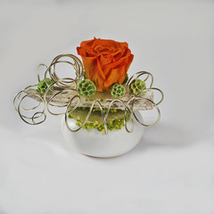 Dried rose, decorated in a white vase