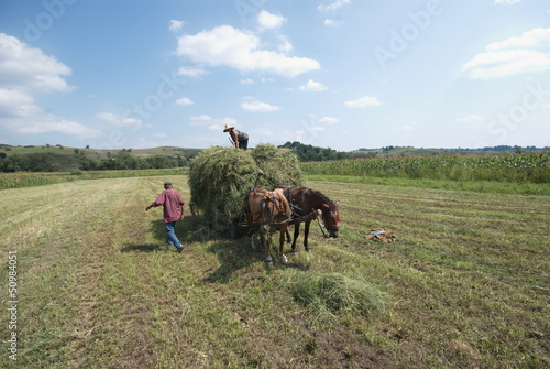 farmers at work in Transylvania, Romania