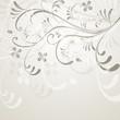 floral, frühling, pflanze, grau, weiß, hell,hintergrund, vektor,