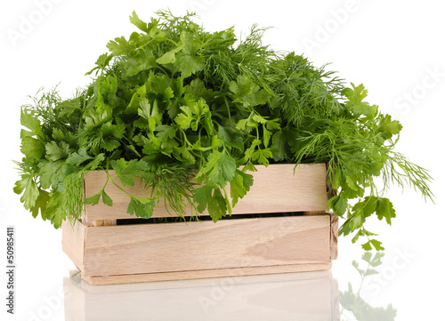 Wooden box with parsley and dill isolated on white