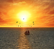 Sailing Boat At The Sunset