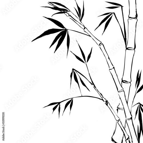 Bamboo © Kotkoa