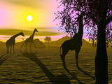 Giraffes by sunset - 3D render