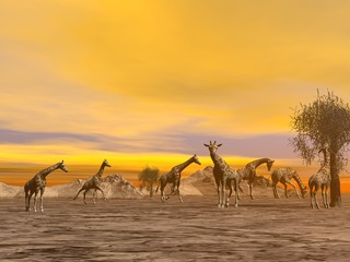 Giraffes in the savannah - 3D render