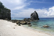 apo island dive site philippines