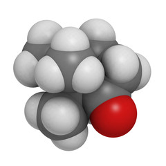 Camphor, chemical structure.