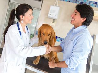Handshake at the vet
