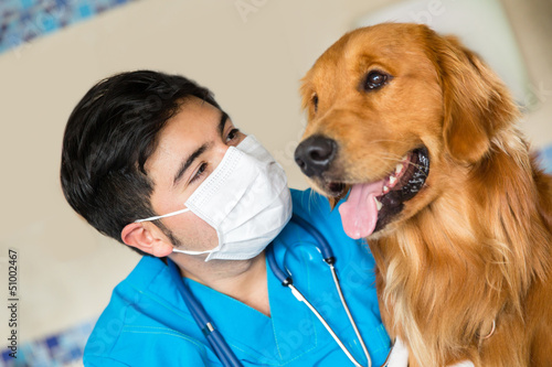 Veterinarian checking a dog