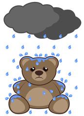 Rain and bear