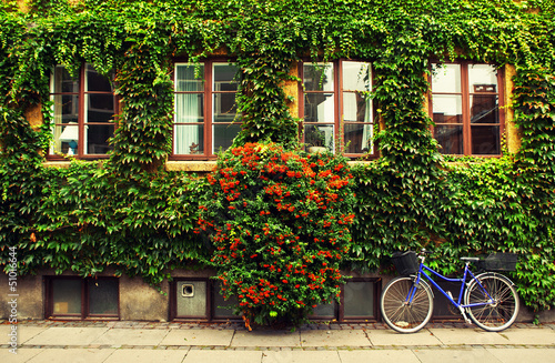 The bicycle in Copenhagen.