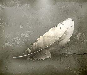 Feather, old-style