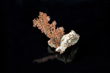 A sample of Native Copper
