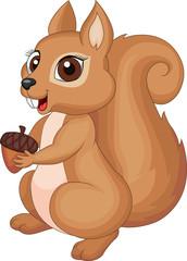 Cute cartoon Squirrel holding acorn