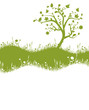 Wiese / Karte mit Baum