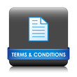 TERMS AND CONDITIONS Web Button (sale use contract disclaimers)