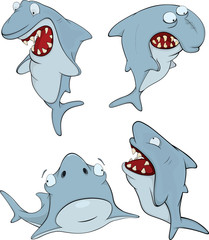Sharks. Cartoon