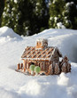 Gingerbread house in real snow