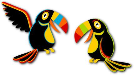 Couple de Toucan