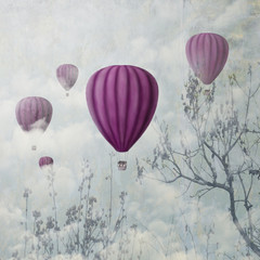Pink Balloons © hitdelight