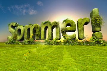 Endlich Sommer!