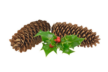 Pine Cones and Holly
