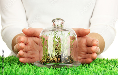 Hands protect grass under glass cover
