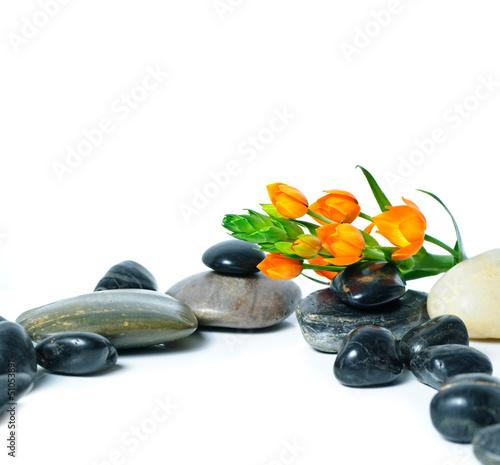 Stilleben aus Steinen und orangefarbenen Blüten