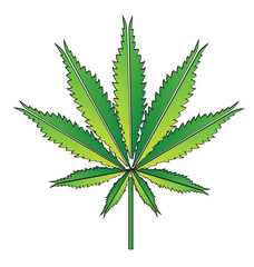 Green hemp leaf or cannabis leaf vector illustration