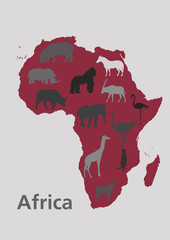 Animals vector of Africa