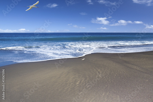plage de sable noir, l''Etang-Salé, île de la Réunion