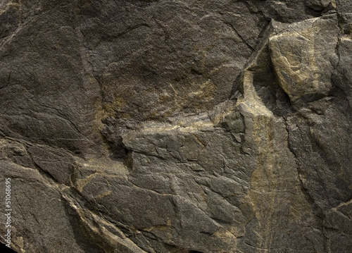 The detail of stone texture