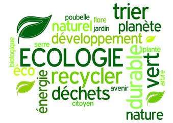 Nuage de Mots :Ecologie