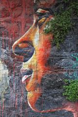 cara de mujer graffiti 2914f © txakel
