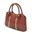 Crocodile leather handbag isolated